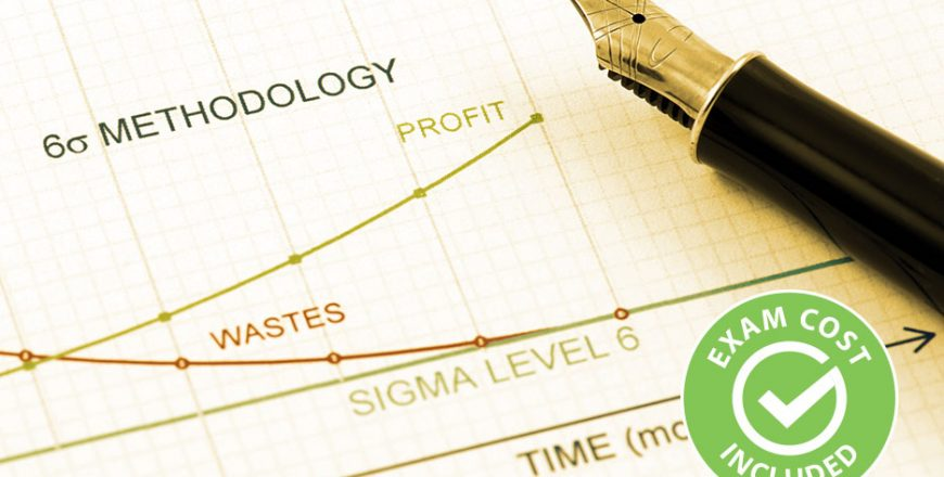 Lean Six Sigma Yellow Belt (Exam Cost Included)